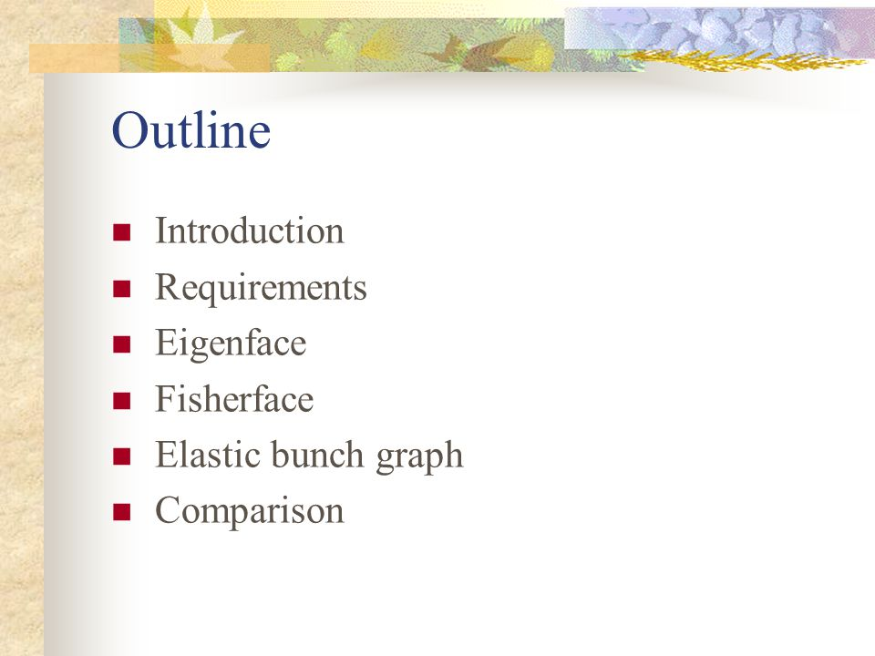 Outline Introduction Requirements Eigenface Fisherface