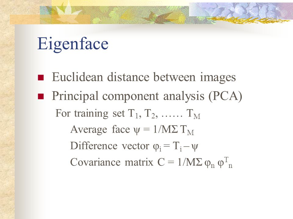 Eigenface Euclidean distance between images