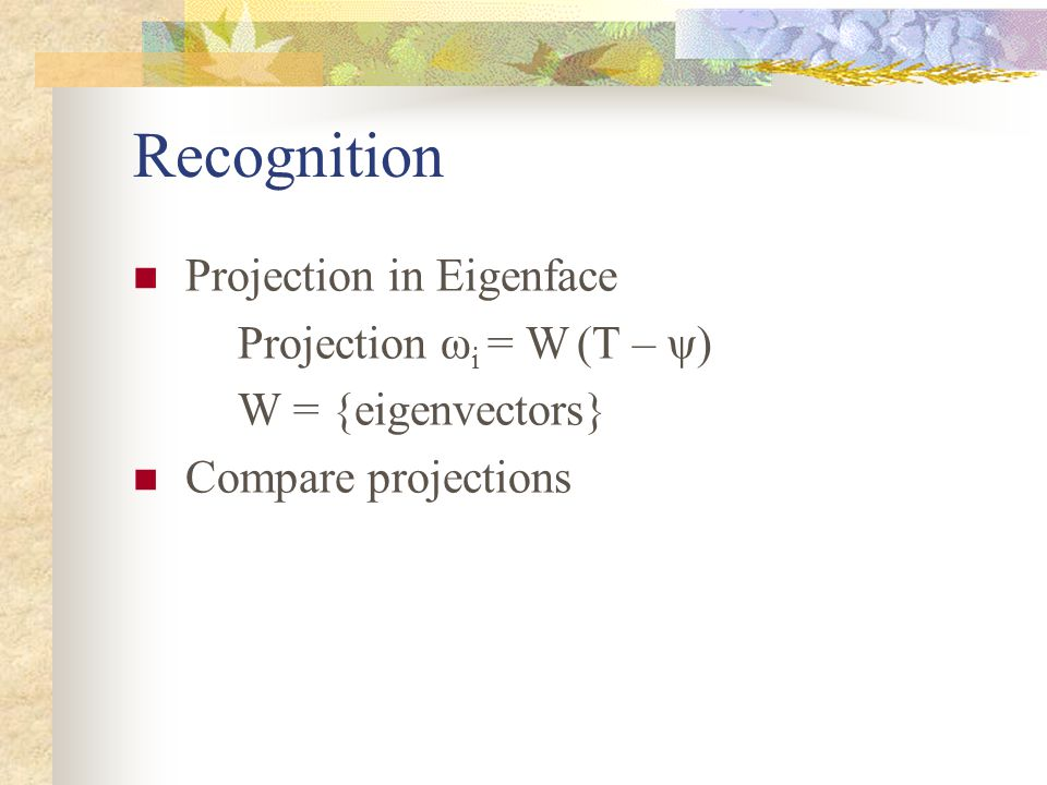Recognition Projection in Eigenface Projection ωi = W (T – ψ)