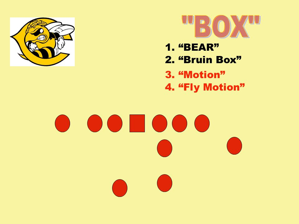 BOX 1. BEAR 2. Bruin Box 3. Motion 4. Fly Motion