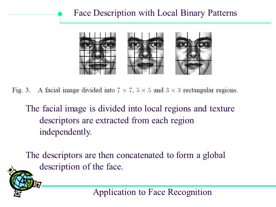 The facial image is divided into local regions and texture descriptors are extracted from each region independently.