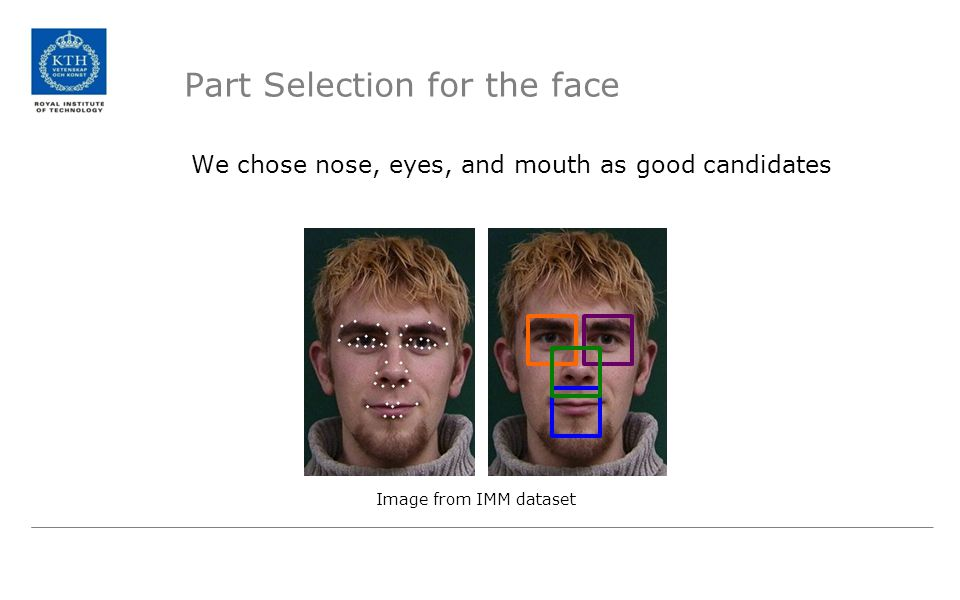 Part Selection for the face
