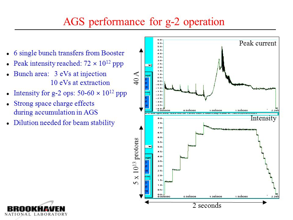 AGS performance for g-2 operation