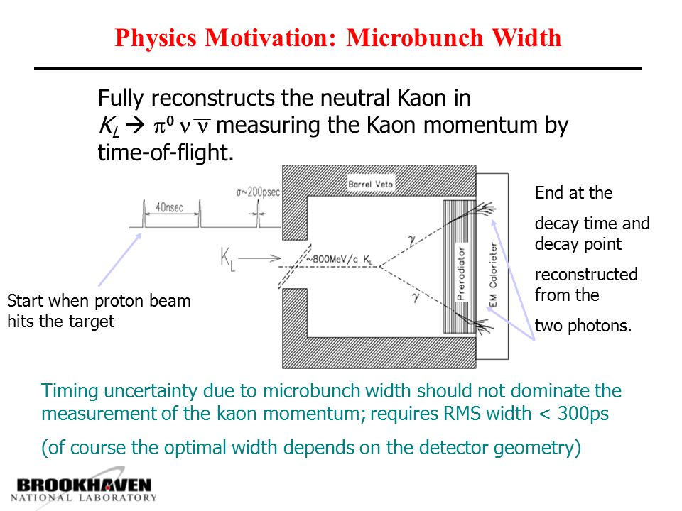 Physics Motivation: Microbunch Width