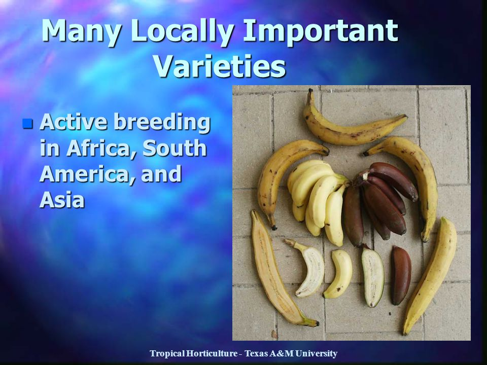 Many Locally Important Varieties