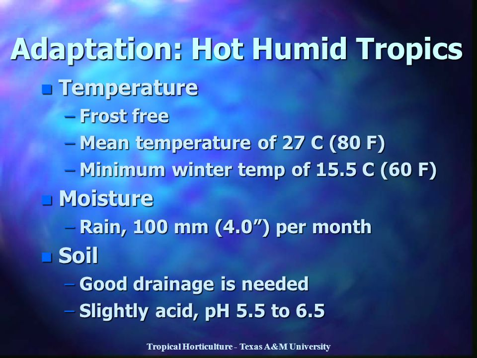 Adaptation: Hot Humid Tropics