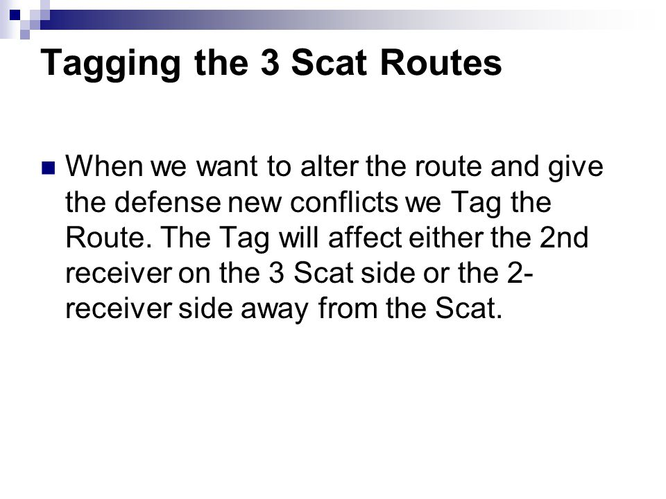 Tagging the 3 Scat Routes