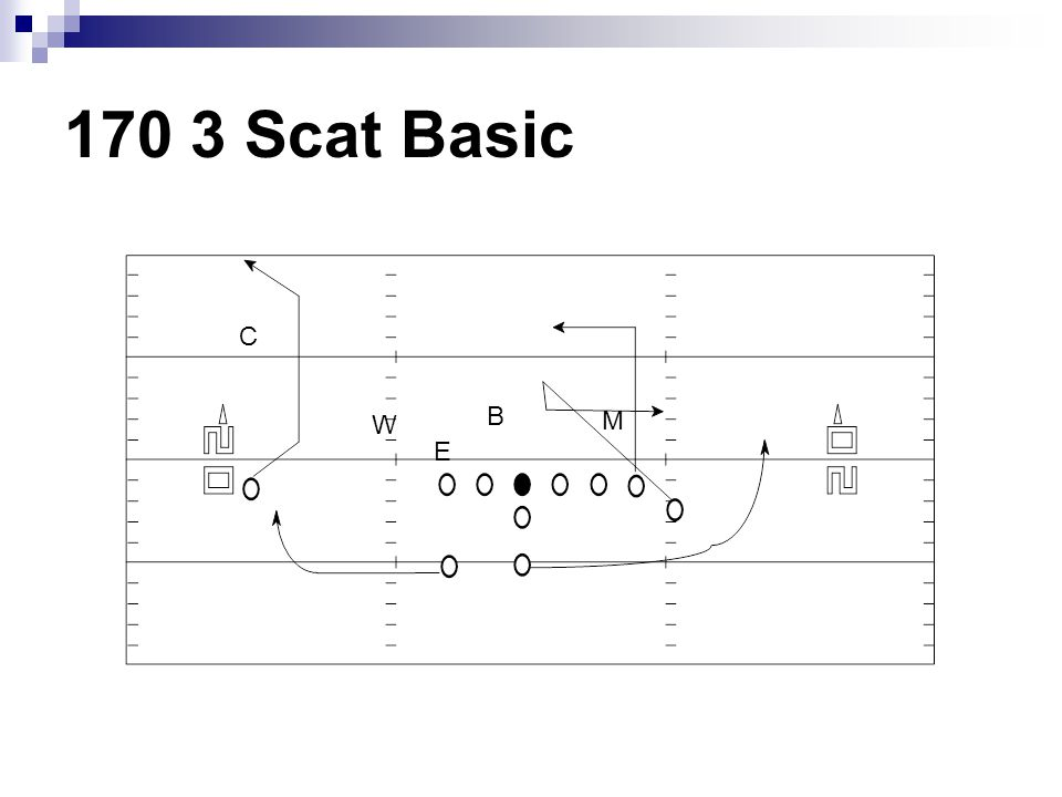 170 3 Scat Basic C B W M E