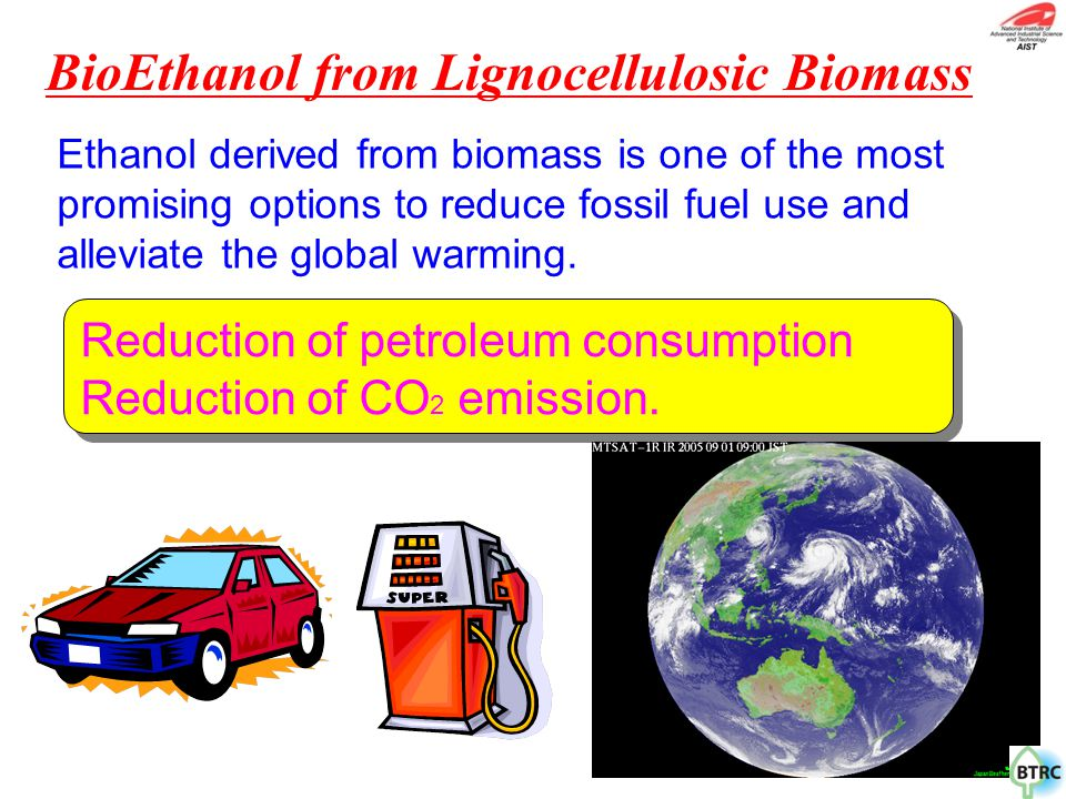 BioEthanol from Lignocellulosic Biomass