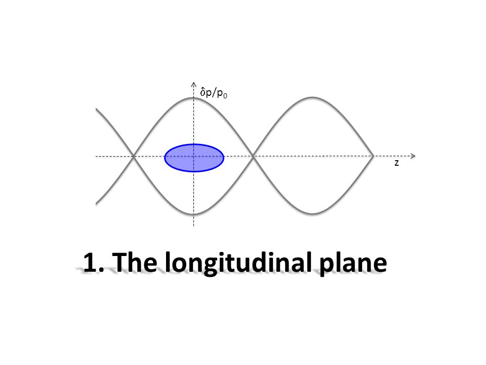 1. The longitudinal plane