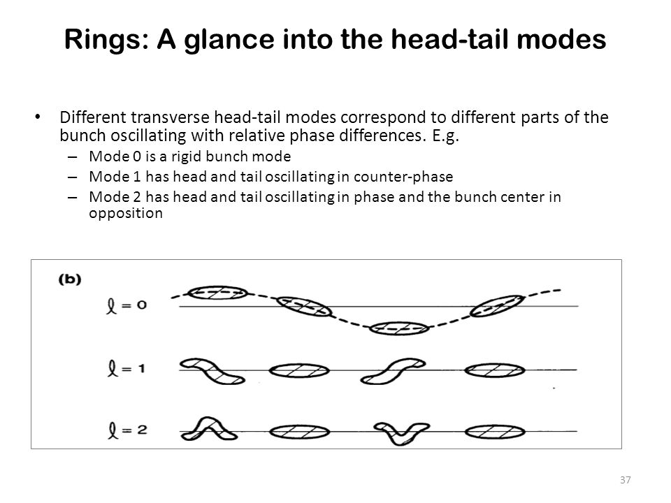 Rings: A glance into the head-tail modes