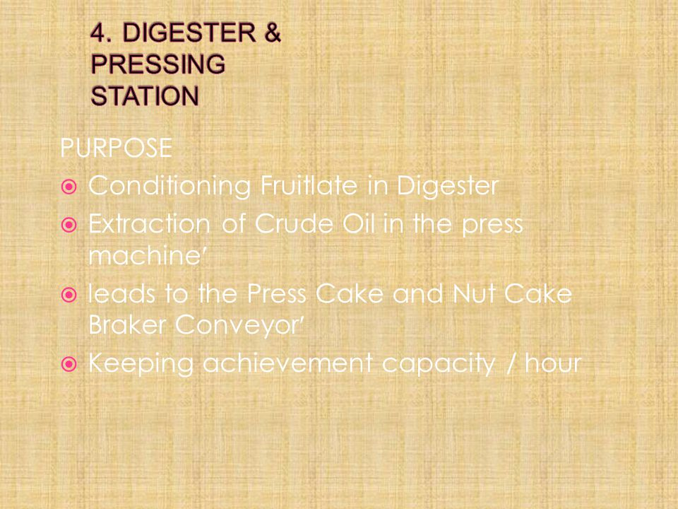 4. DIGESTER & PRESSING STATION