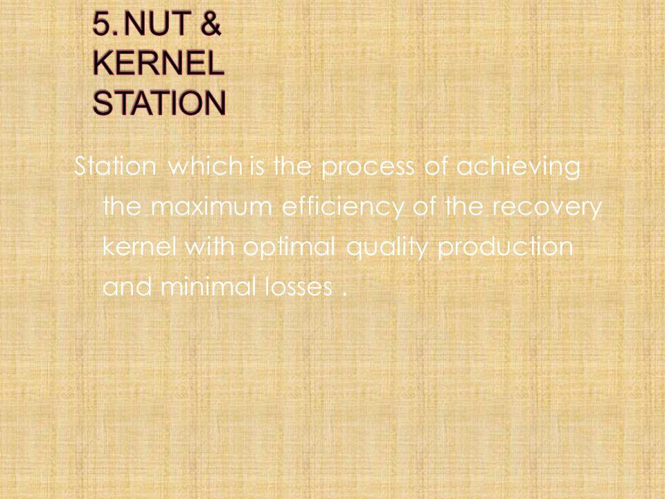 5. NUT & KERNEL STATION
