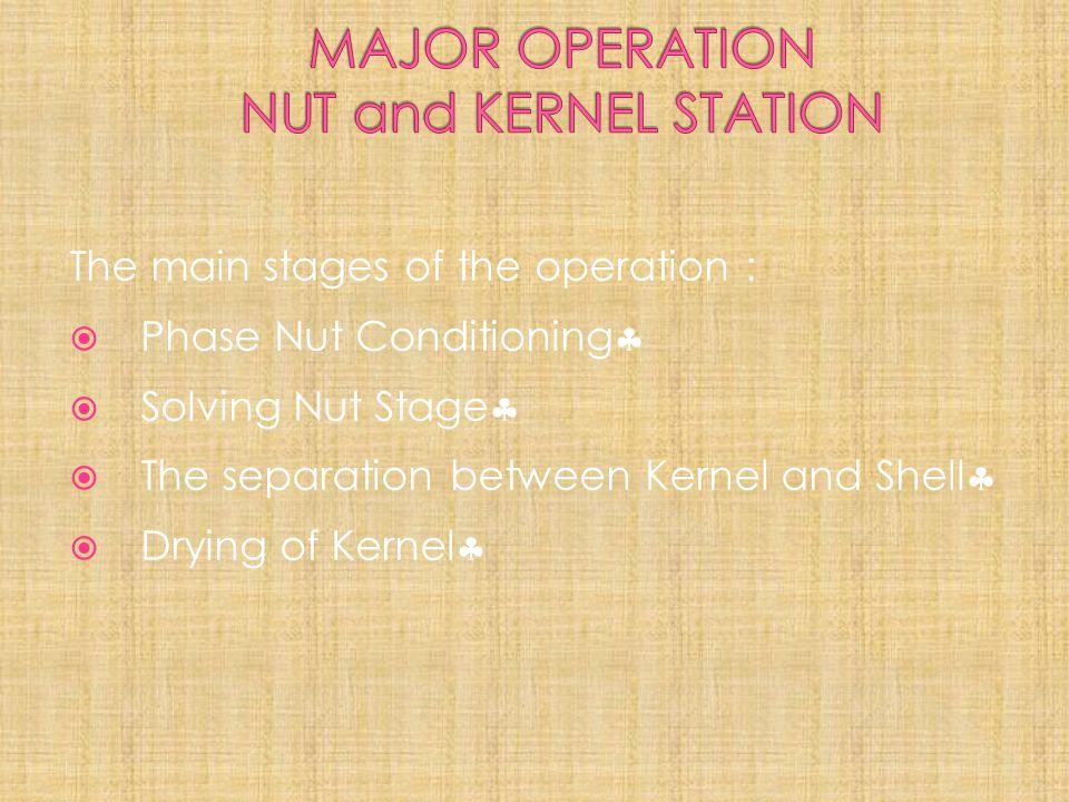 MAJOR OPERATION NUT and KERNEL STATION
