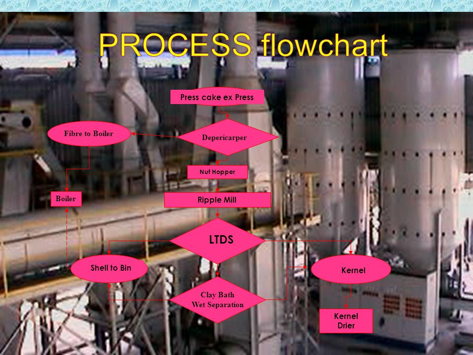 PROCESS flowchart LTDS Press cake ex Press Fibre to Boiler