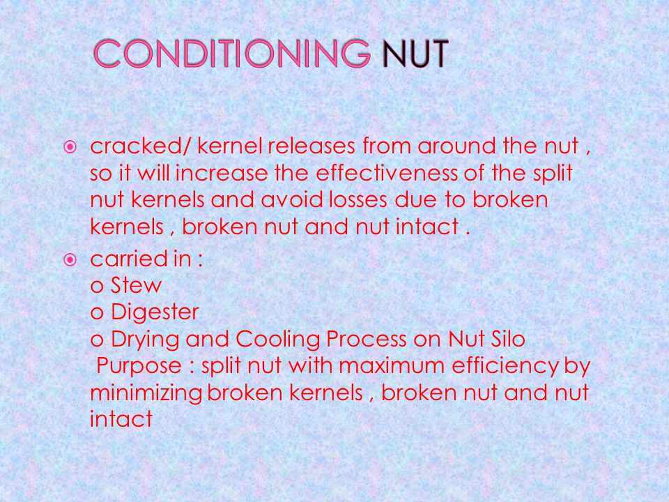 CONDITIONING NUT