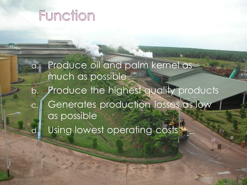 Function Produce oil and palm kernel as much as possible