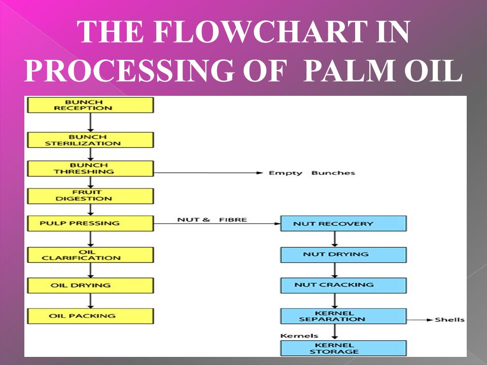 THE FLOWCHART IN PROCESSING OF PALM OIL
