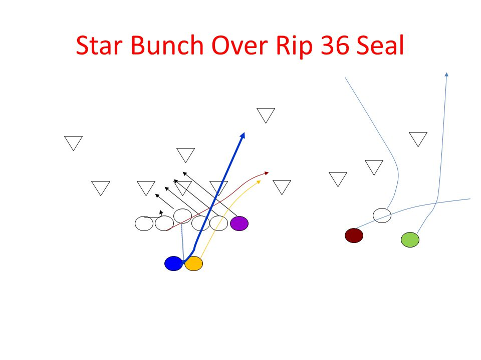 Star Bunch Over Rip 36 Seal