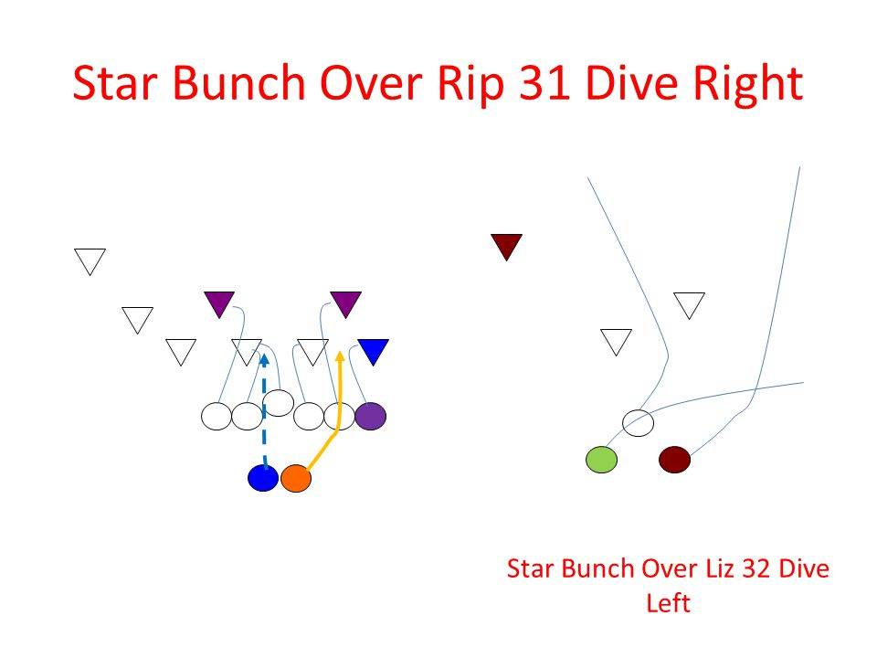 Star Bunch Over Rip 31 Dive Right