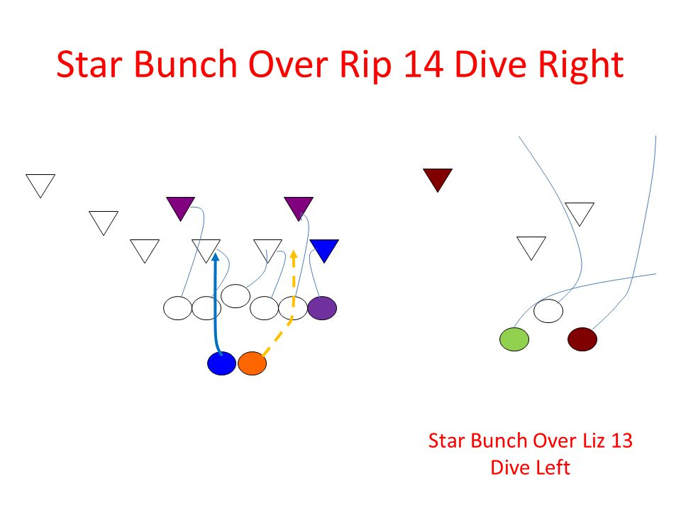 Star Bunch Over Rip 14 Dive Right