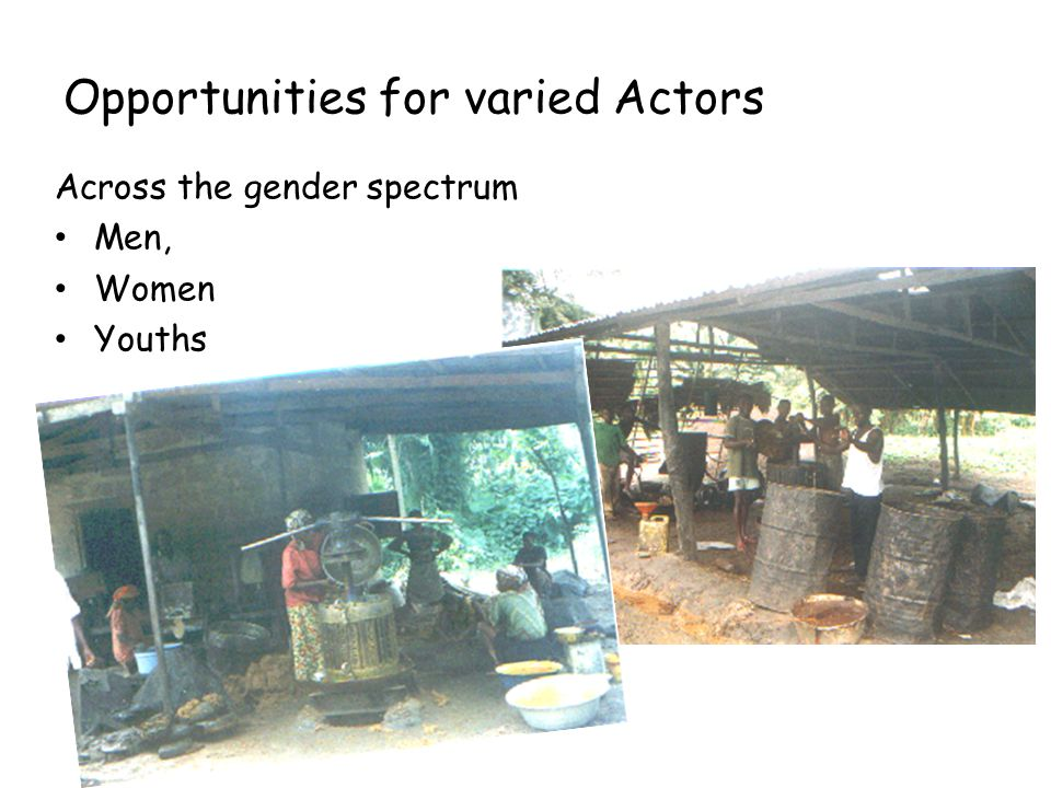 Opportunities for varied Actors