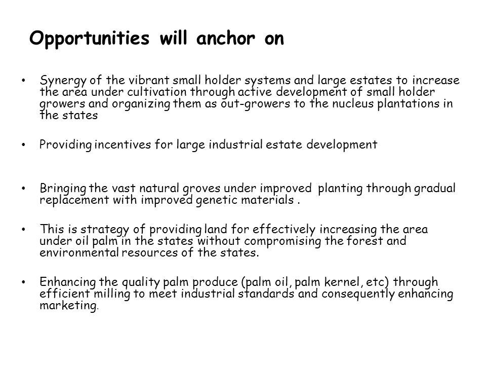 Opportunities will anchor on