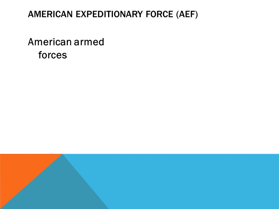 American Expeditionary Force (AEF)