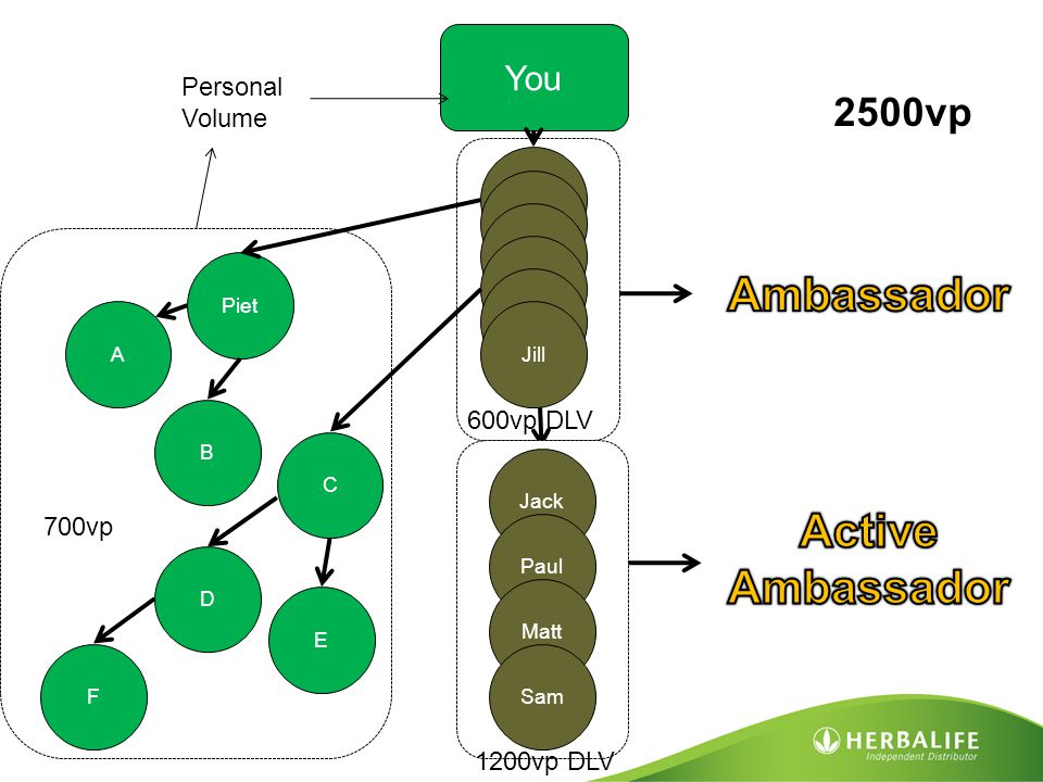 Ambassador Active Ambassador