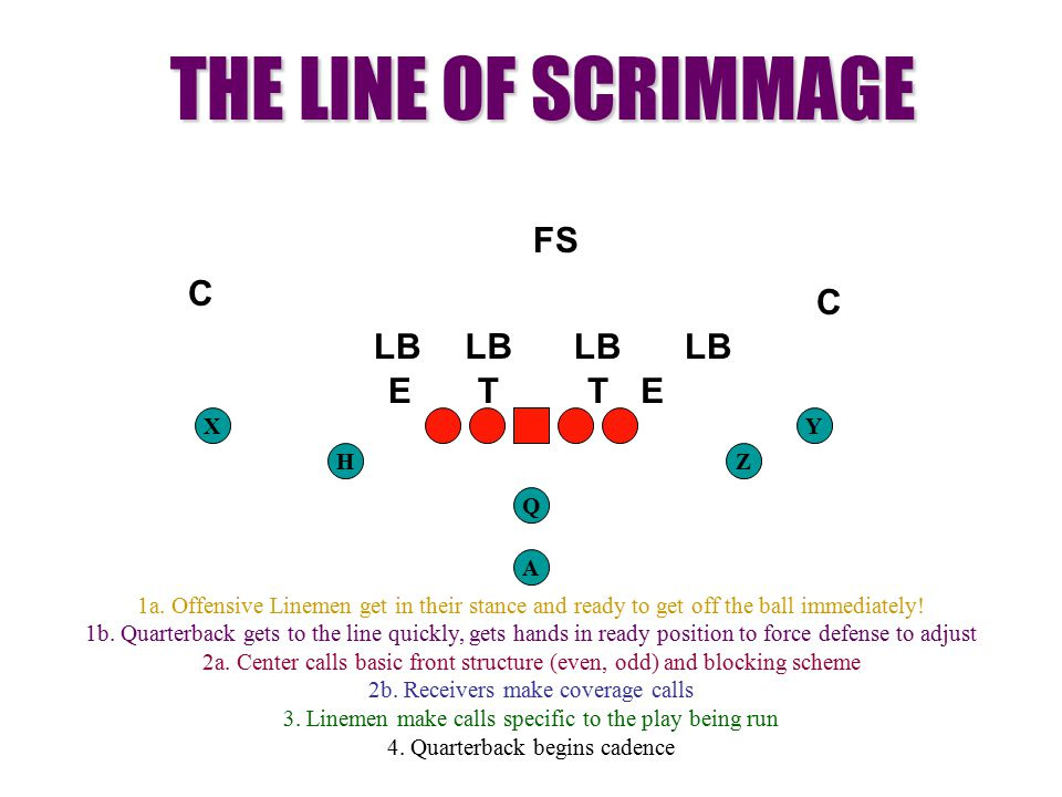 THE LINE OF SCRIMMAGE FS C C T E LB X Y H Z Q A