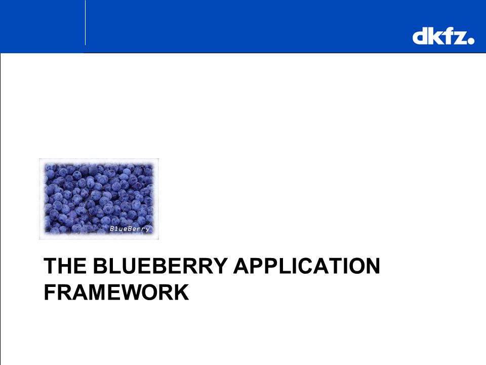 The BlueBerry Application Framework