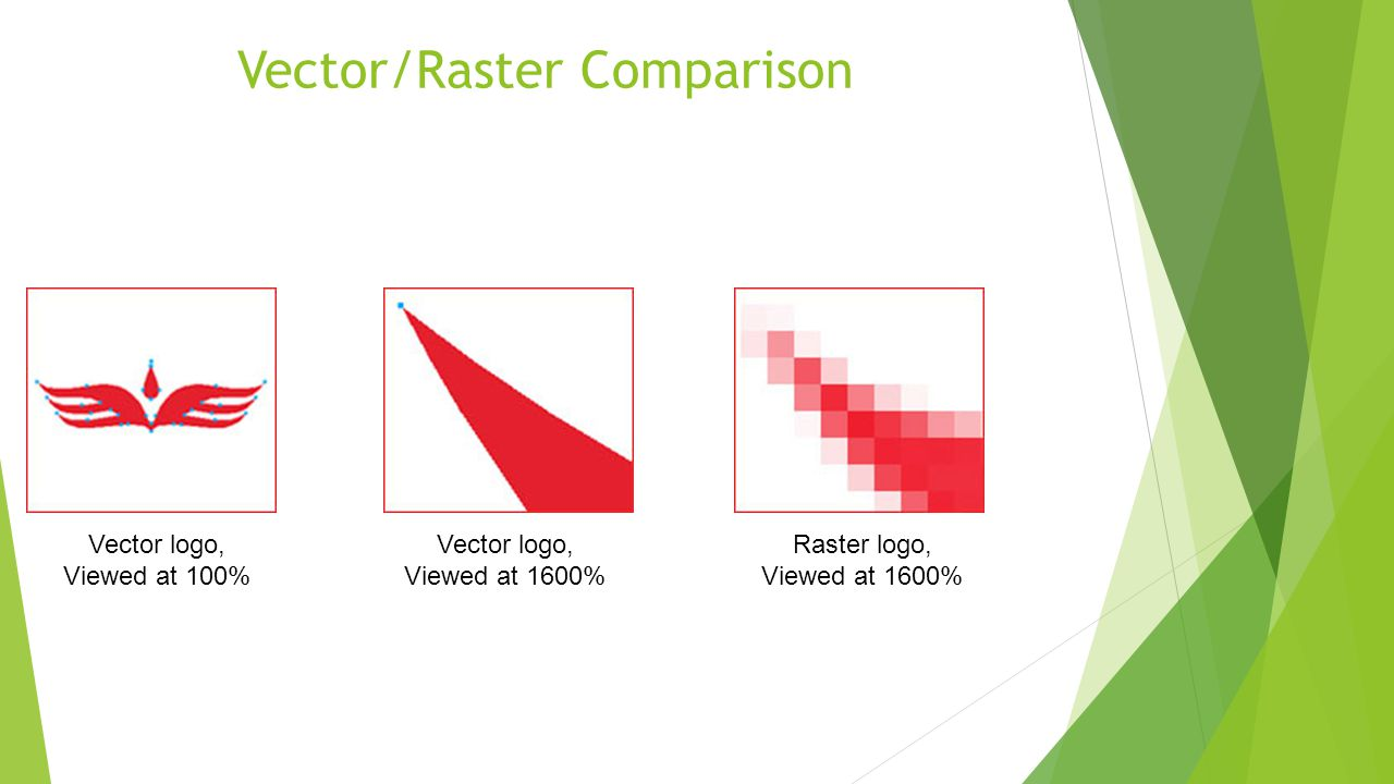 Vector/Raster Comparison