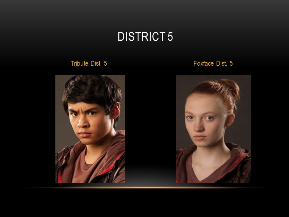 District 5 Tribute Dist. 5 Foxface Dist. 5
