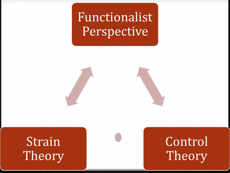 Functionalist Perspective