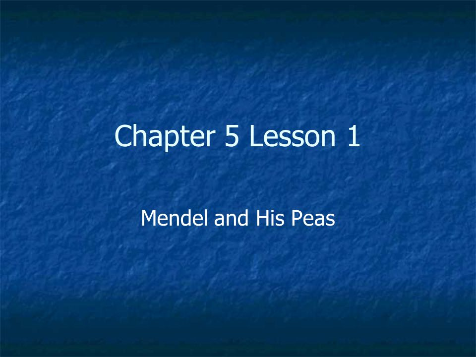 Chapter 5 Lesson 1 Mendel and His Peas