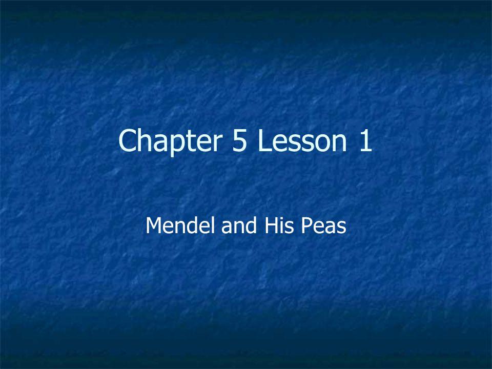 book Progress in