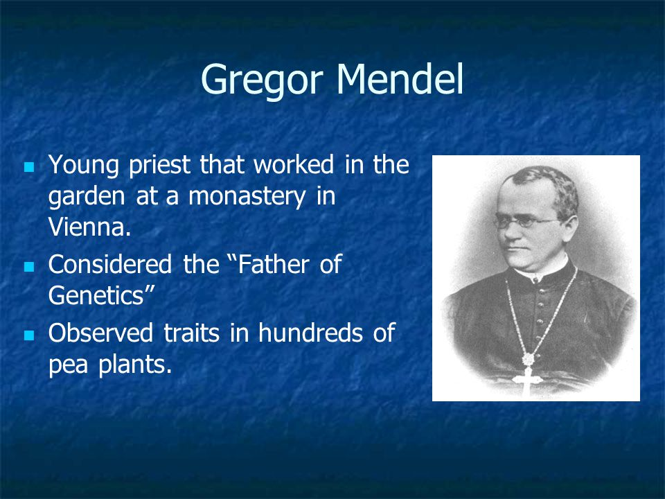 Gregor Mendel Young priest that worked in the garden at a monastery in Vienna. Considered the Father of Genetics