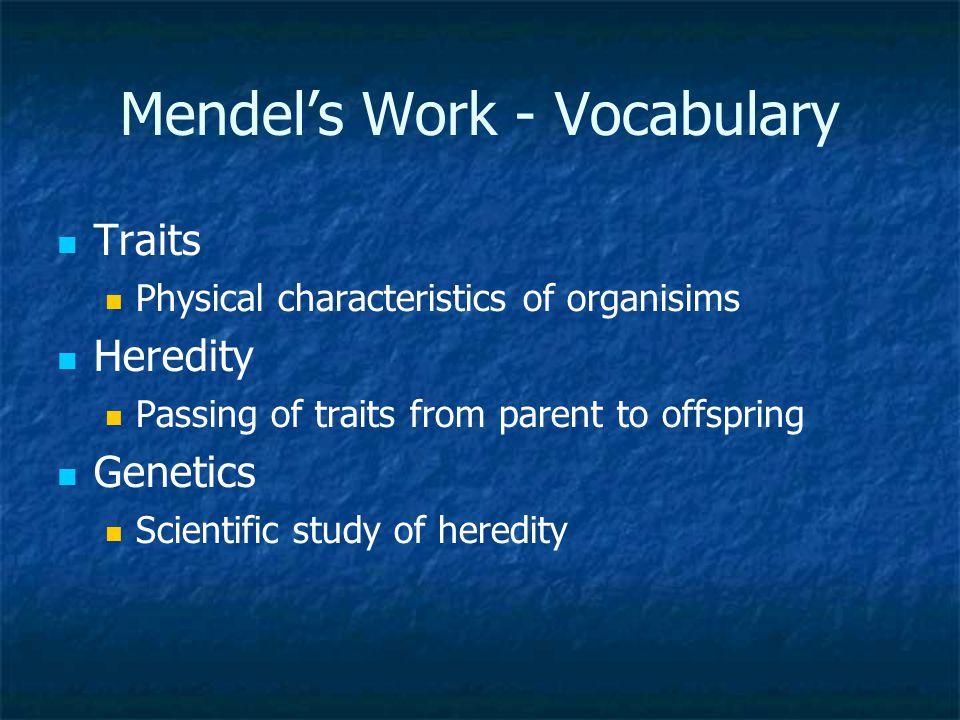 Mendel's Work - Vocabulary