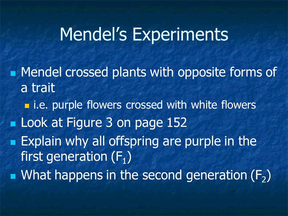 Mendel's Experiments Mendel crossed plants with opposite forms of a trait. i.e. purple flowers crossed with white flowers.