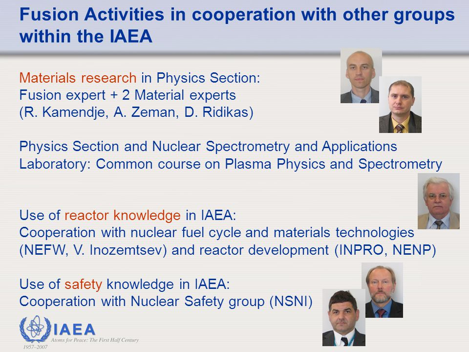 Fusion Activities in cooperation with other groups within the IAEA