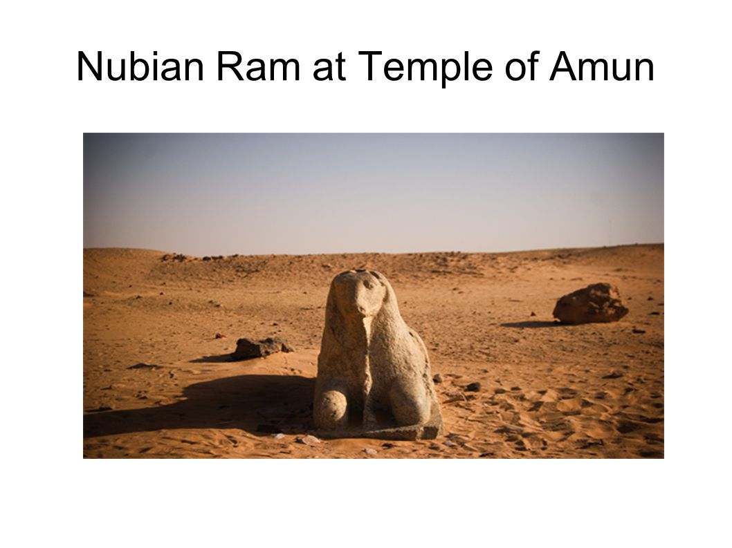 Nubian Ram at Temple of Amun