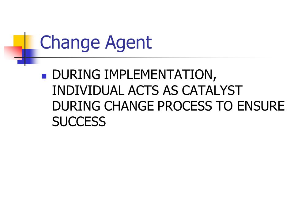 Change Agent DURING IMPLEMENTATION, INDIVIDUAL ACTS AS CATALYST DURING CHANGE PROCESS TO ENSURE SUCCESS.