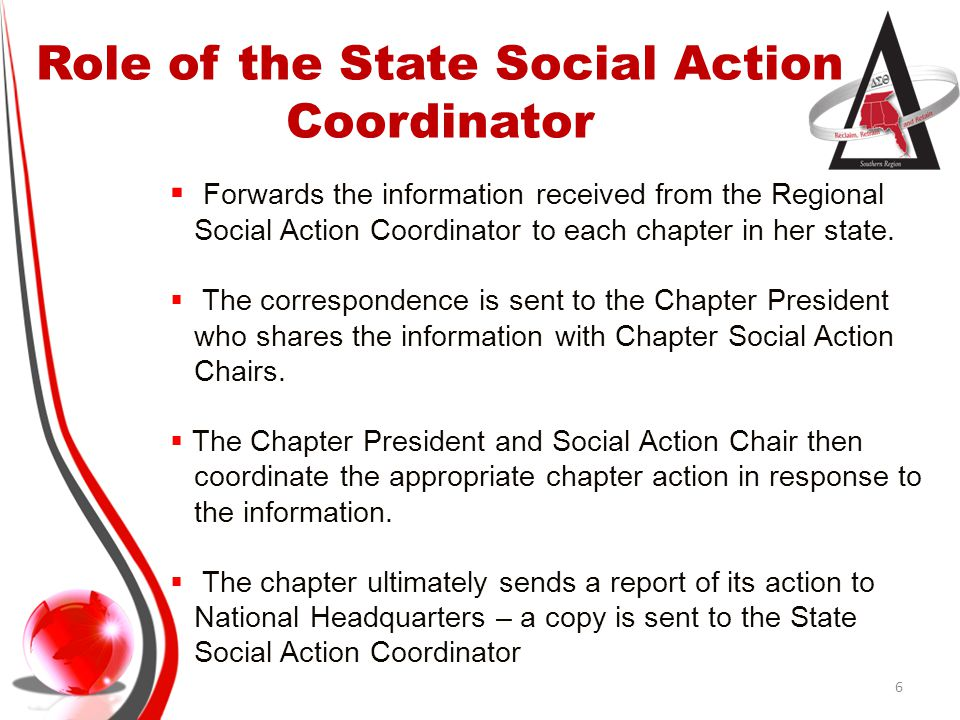 Role of the State Social Action Coordinator