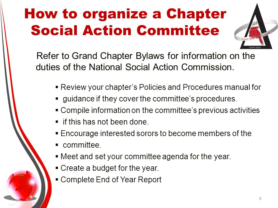 How to organize a Chapter Social Action Committee