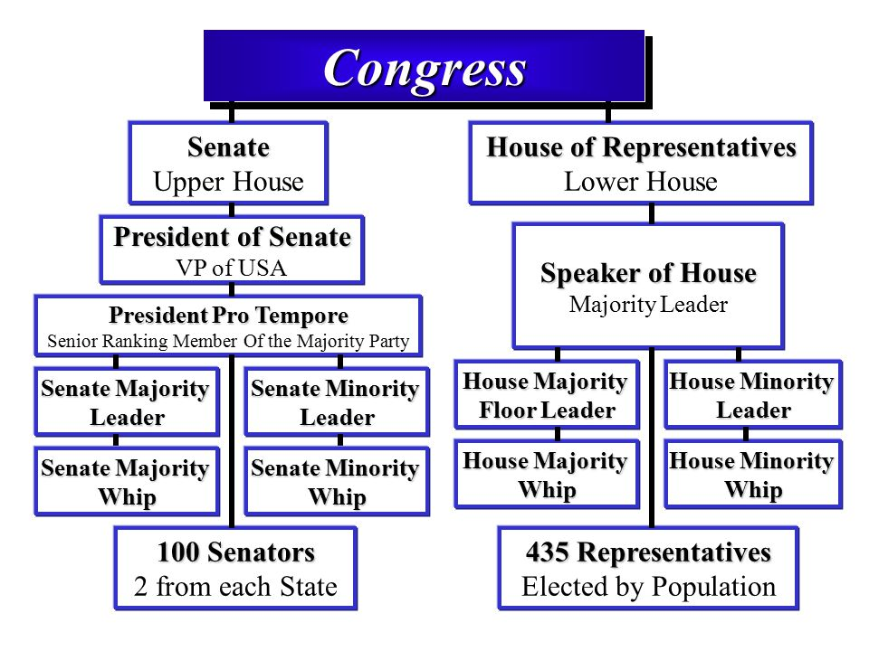 us congress and president relationship chart