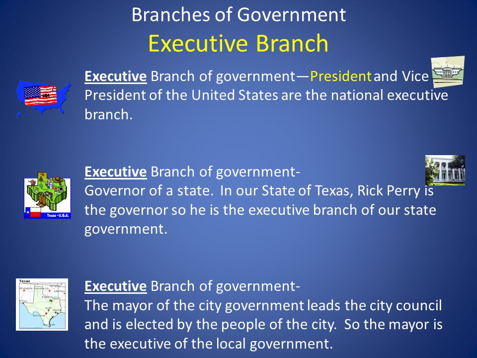 Branches of Government Executive Branch