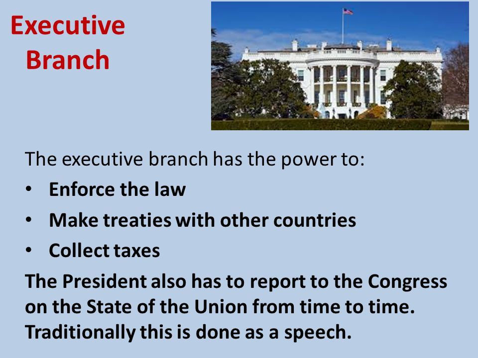 Executive Branch The executive branch has the power to: