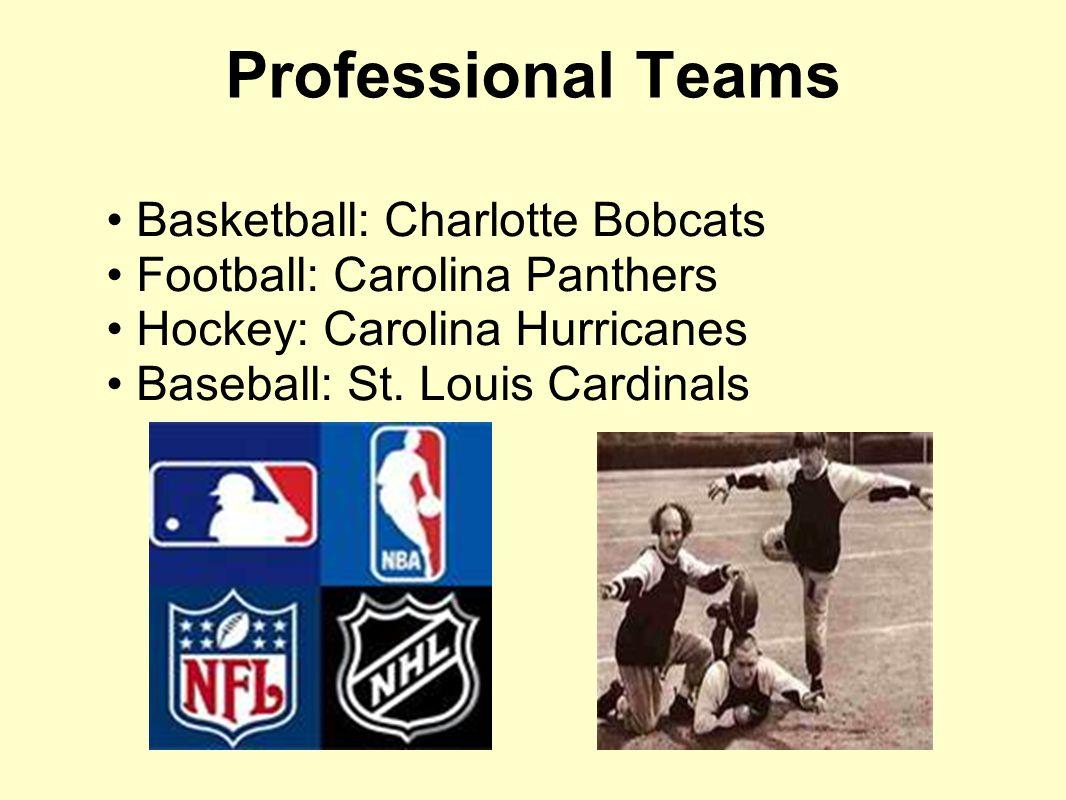 Professional Teams Basketball: Charlotte Bobcats