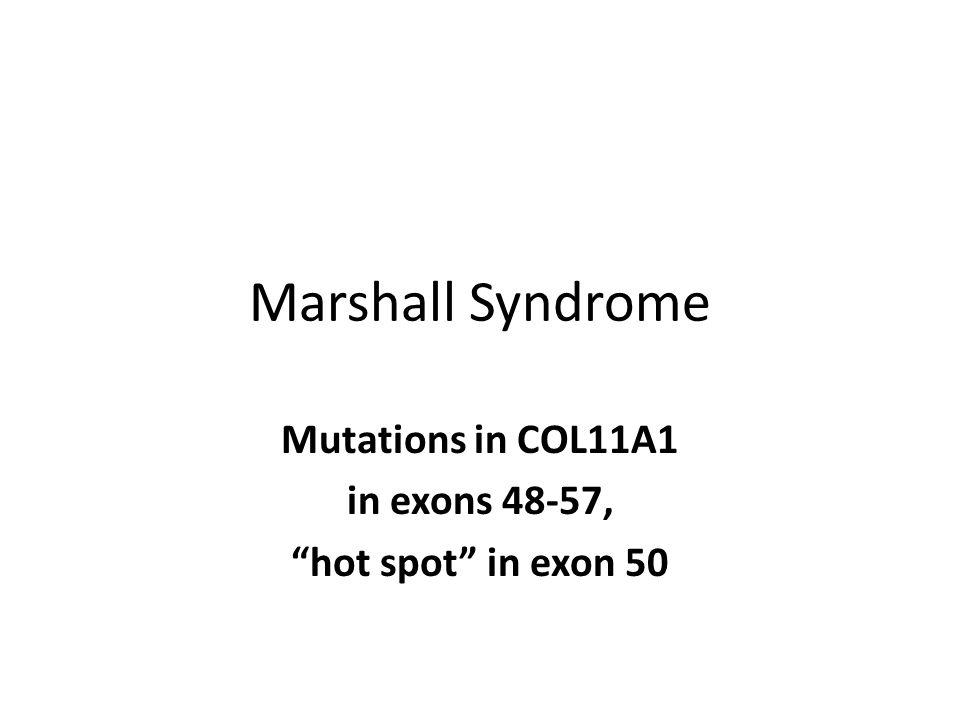 Mutations in COL11A1 in exons 48-57, hot spot in exon 50