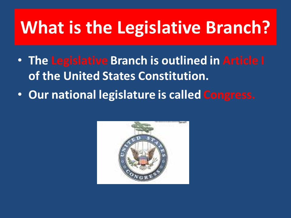 What is the Legislative Branch